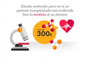 Estudio molecular para ver si un paciente trasplantado está recibiendo bien la médula de su donante